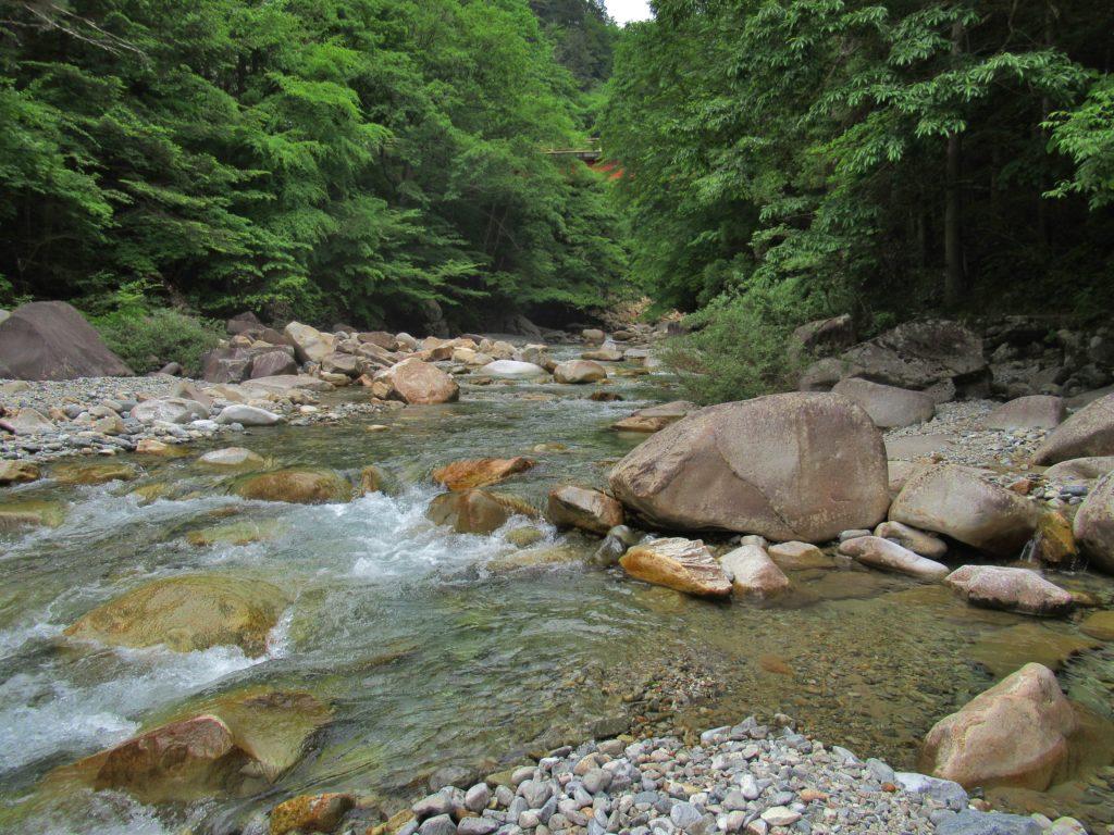 恋路のつり橋付近の渓谷の景観