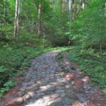 鳥居峠の石畳道