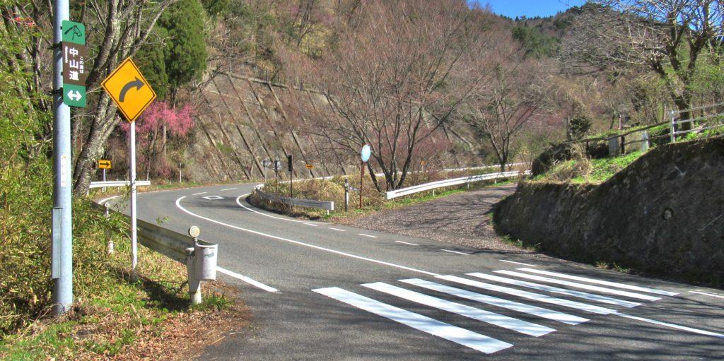 Shimizu Juncture 1