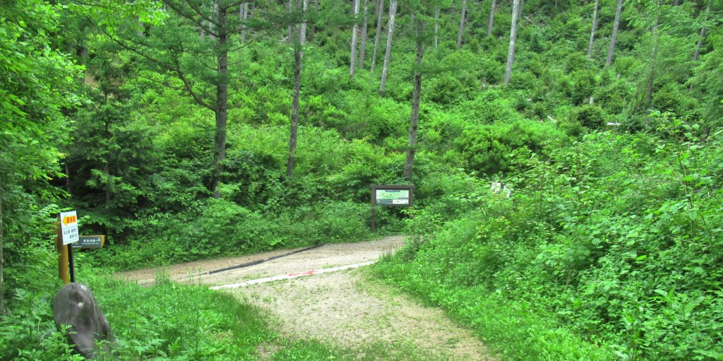 Torii Pass Juncture 7