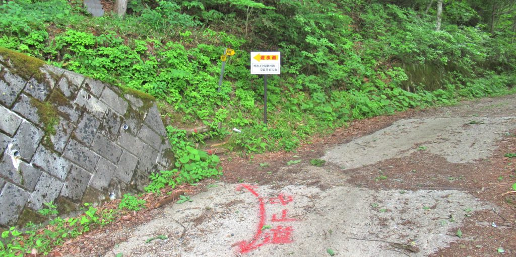 Torii Pass Juncture 8