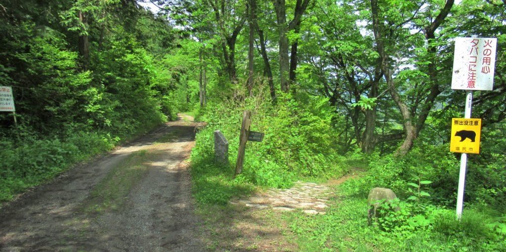 Torii Pass Juncture 9