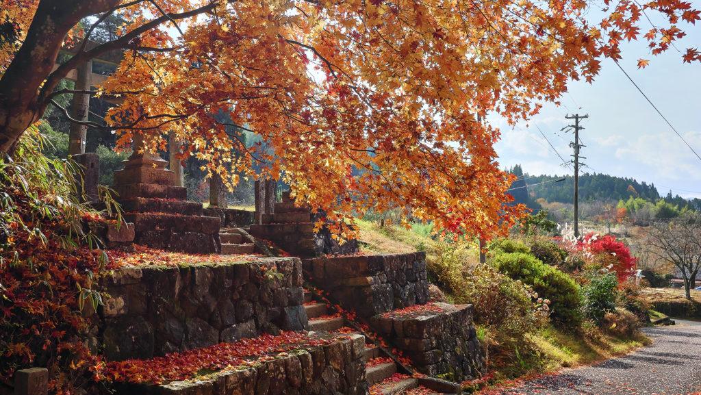 熊野神社付近